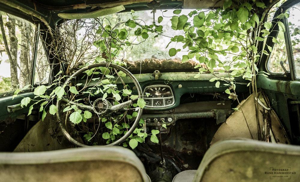 fotograf-oslo-gammel-veteranbil-fotorune-bilkirkegard-sverige.jpg