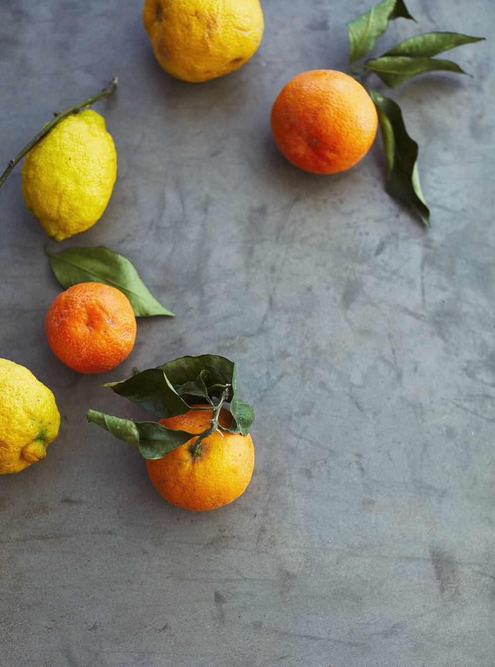 Oranges&Lemons_025.jpg