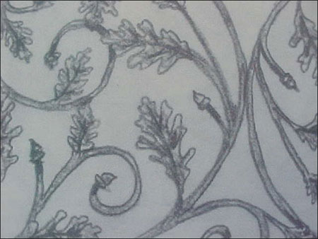 The following demonstrates the processes and tooling used to vein an oak leaf. This is the drawing of the design.      -