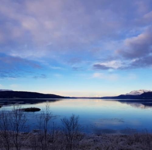 Blått landskap en tidlig morgen.