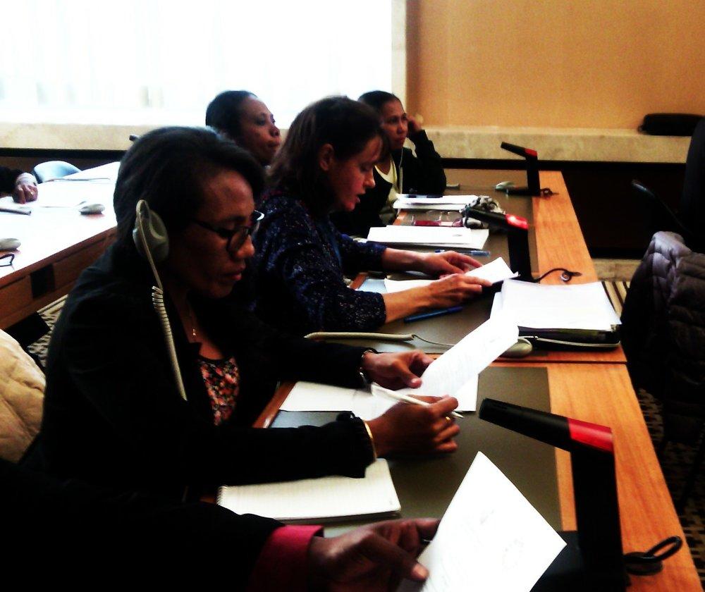 Rede ba Rai CEDAW Review Women ESC Rights.jpg