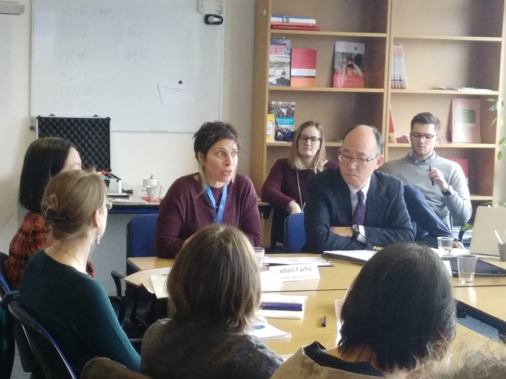 Special Rapporteur on Adaquate Housing - Geneva - Advocacy - discussions2.jpg