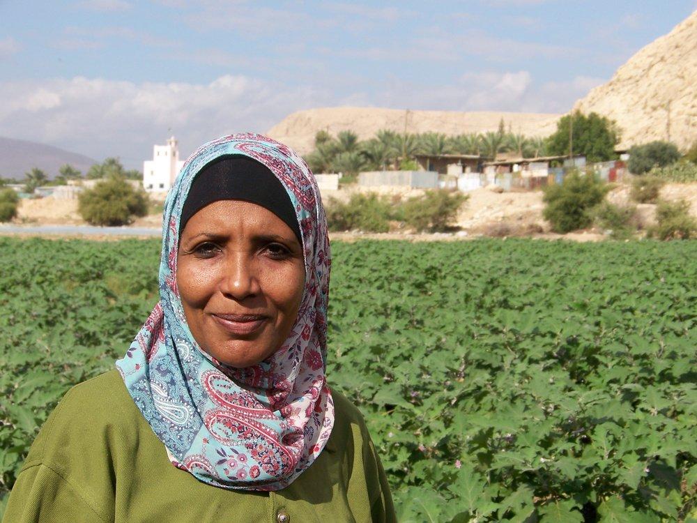 Palestinian farmer with eggplants.jpg
