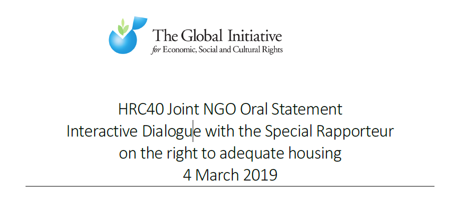 Image - Oral Statement - UNSR - 2019.PNG