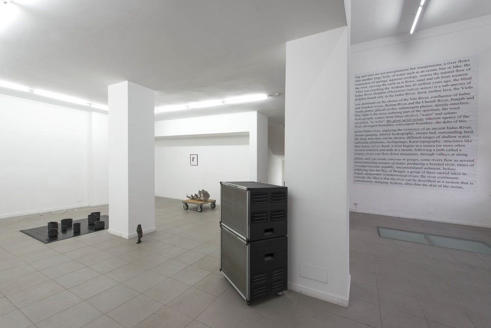 biotic/abiotic, 2014-15. Installation view. Photo by Giorgio Benni. Image courtesy the artists, curators and The Gallery Apart, Rome.