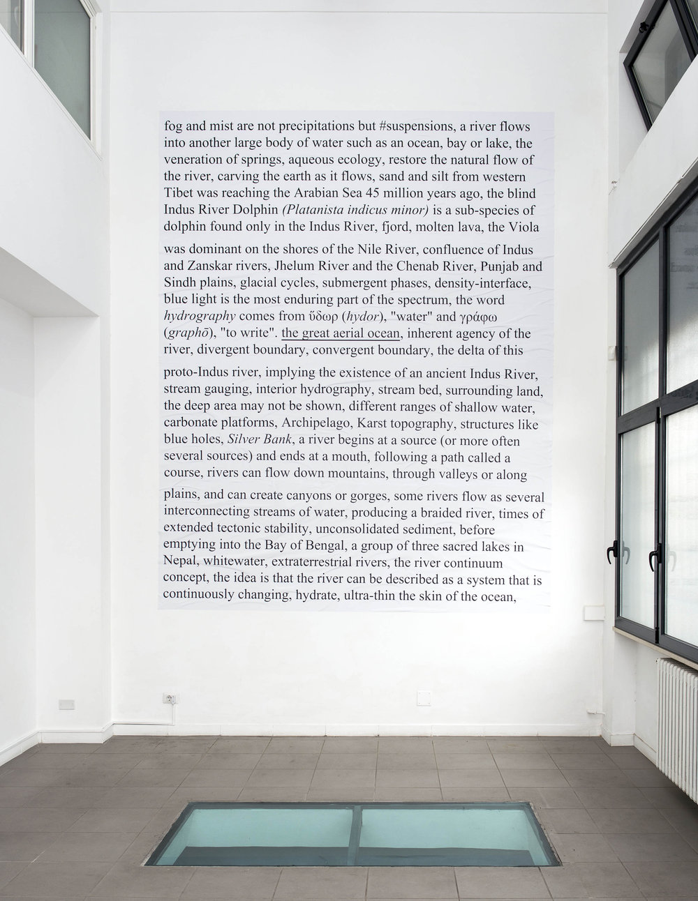 Emily Jones, We Are Water. Platanista indicus minor, 2014. Photo by Giorgio Benni. Image courtesy the artist, curators and The Gallery Apart, Rome.
