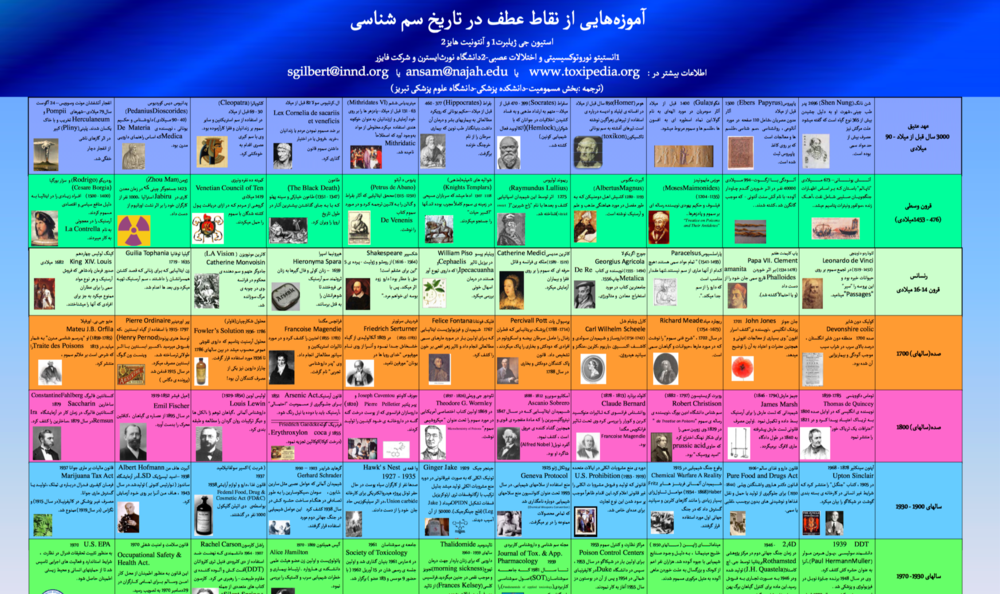 Copy of Persian