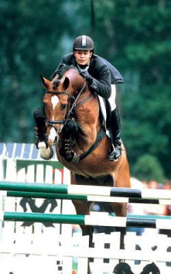 Catoki, photo credit Superior Equine Sires