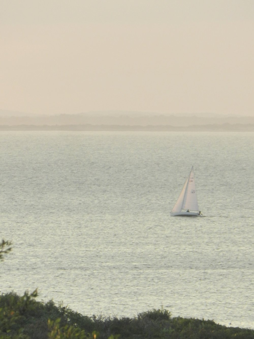 Sailboats and working fishing boats from Gloucester Harbor are frequent sights.