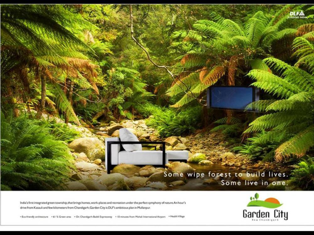 DLF - Print Campaign