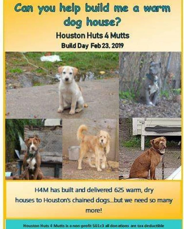 Another build day is coming! If you would like to donate please visit our website Houstonhuts4mutts.org We and the doggies appreciate it! 🐶♥️