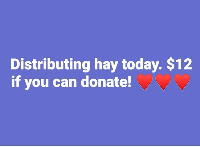 Will be going out and putting hay in the dog houses to help keep them warm. 12$ a bale if you can donate! Dogs and us appreciate it! ♥️♥️♥️