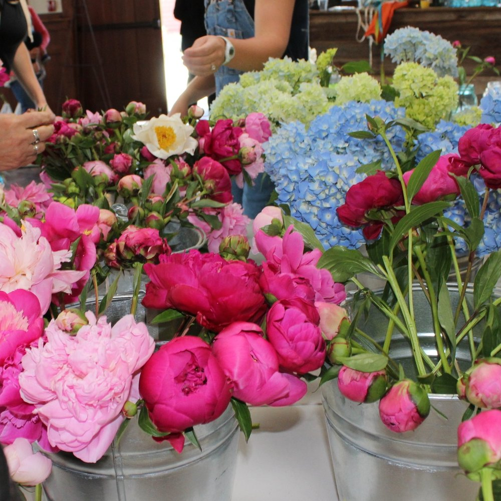 Wholesale Flowers -