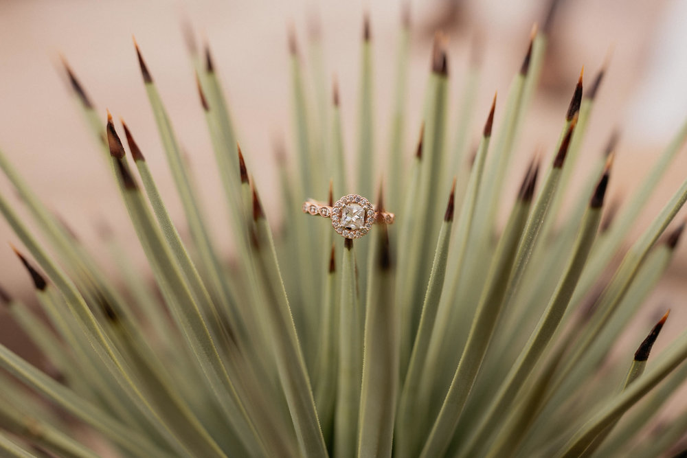 Joshua Tree Styled Shoot-72.jpg