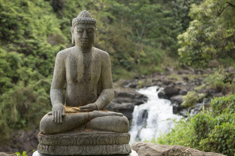 buddha 2000x1333.jpg