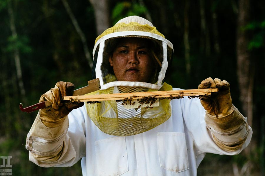 Beekeeping-in-Hawaii-6.jpg