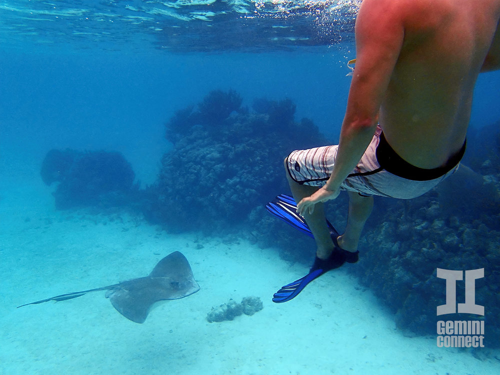 Mexico-Rocks-Snorkeling-16.jpg