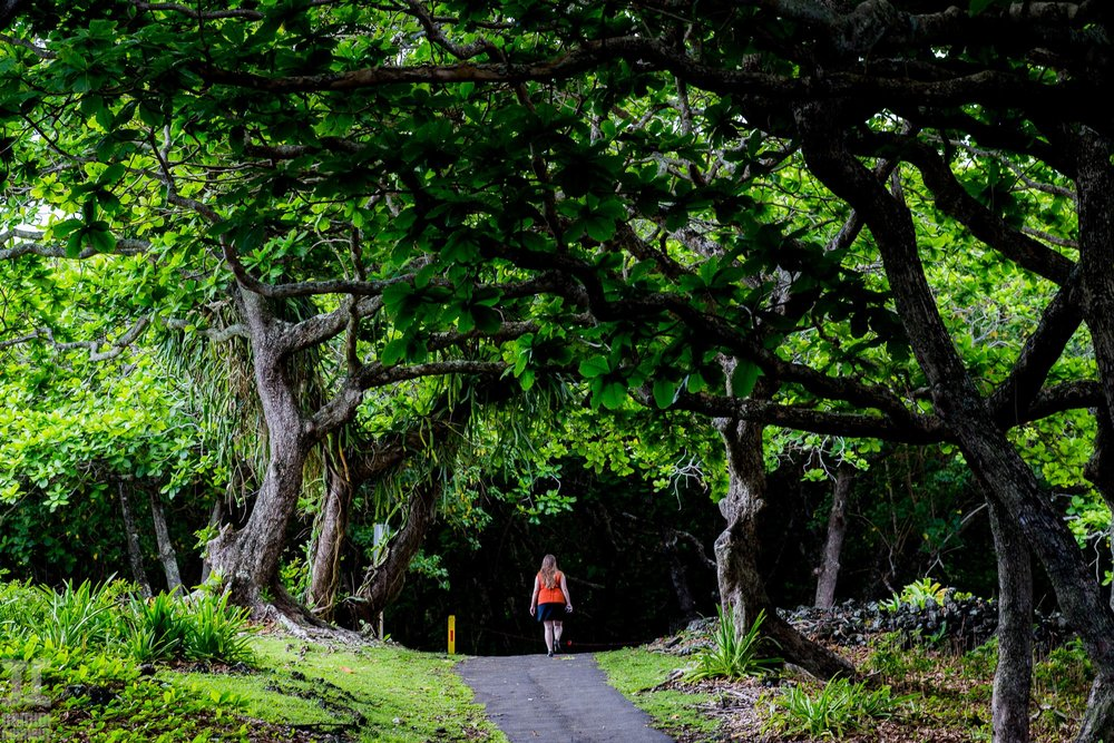 Maui-Hawaii-6.jpg