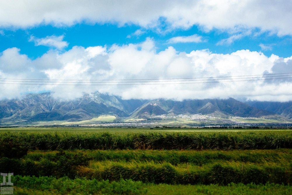 Maui-Hawaii-72.jpg