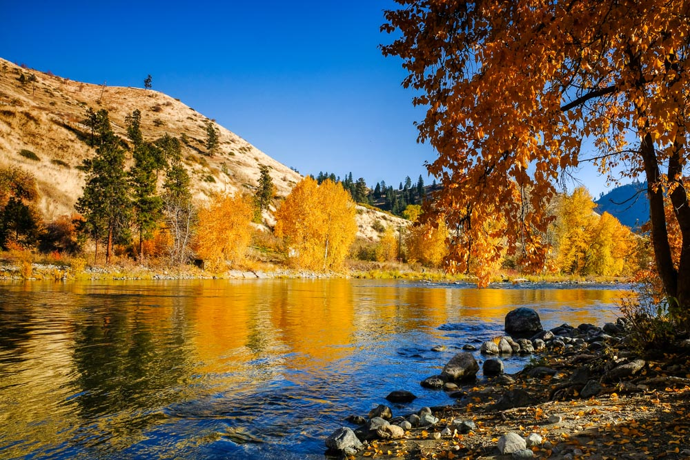 WA-Fall-Color-13.jpg