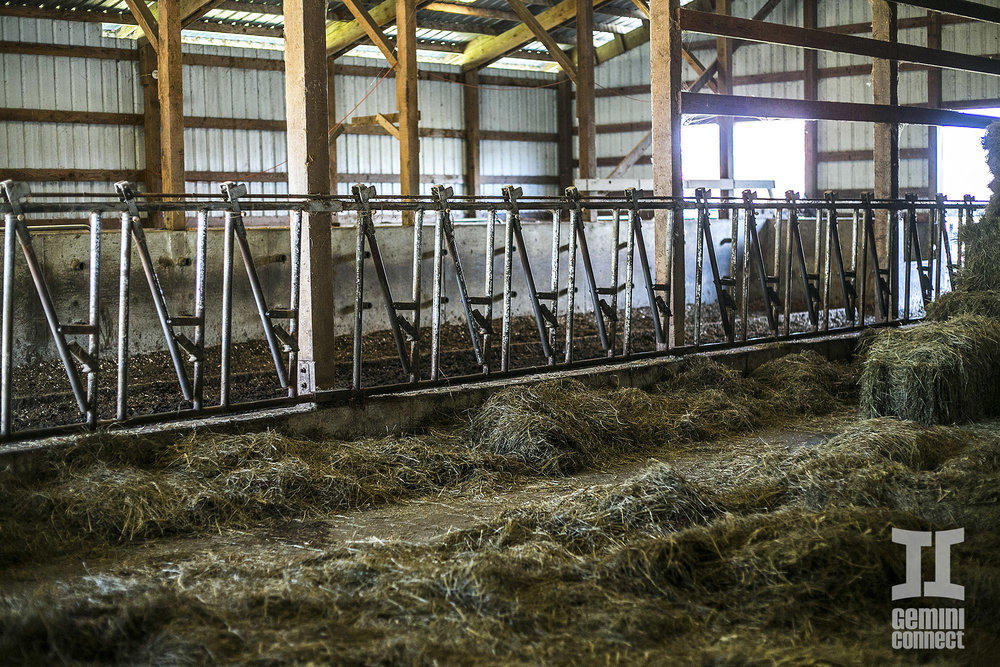 HB-Farm-148.jpg