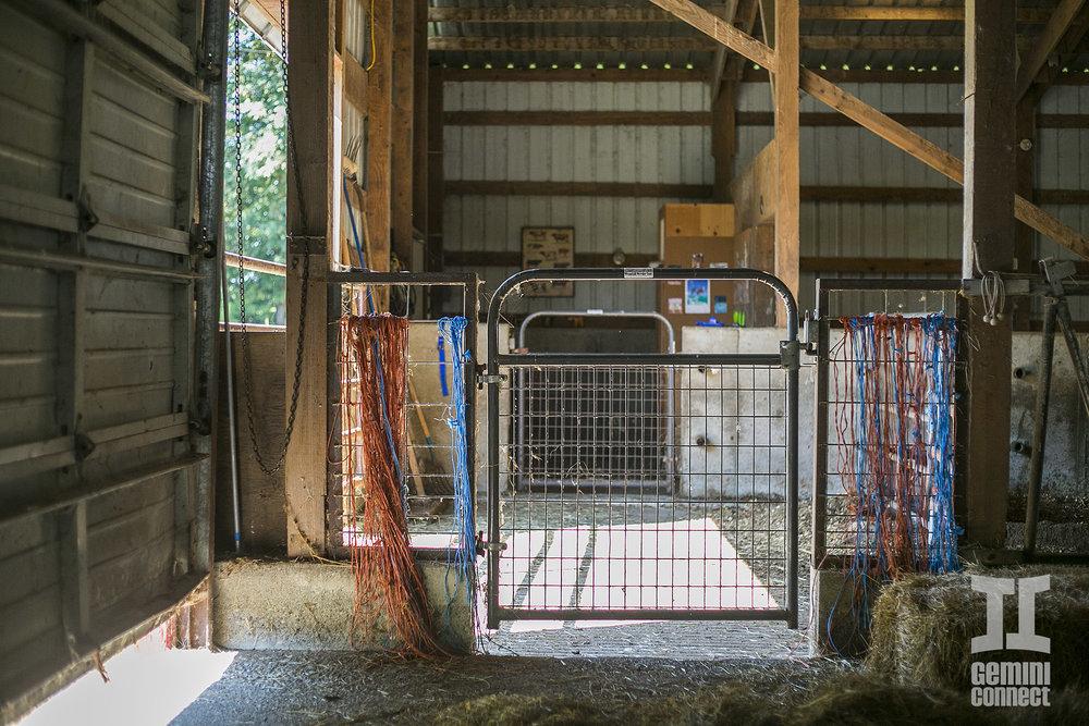 HB-Farm-147.jpg