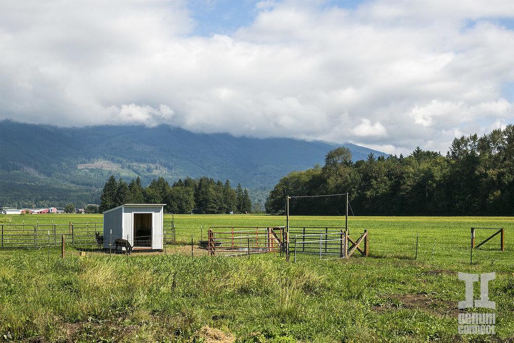 HB-Farm-145.jpg