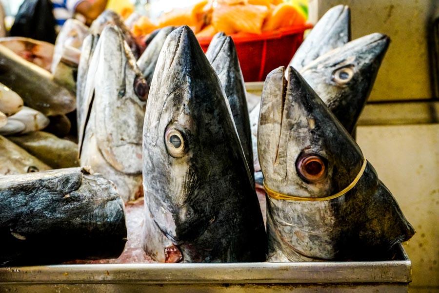Singapore fish bee hoon soup