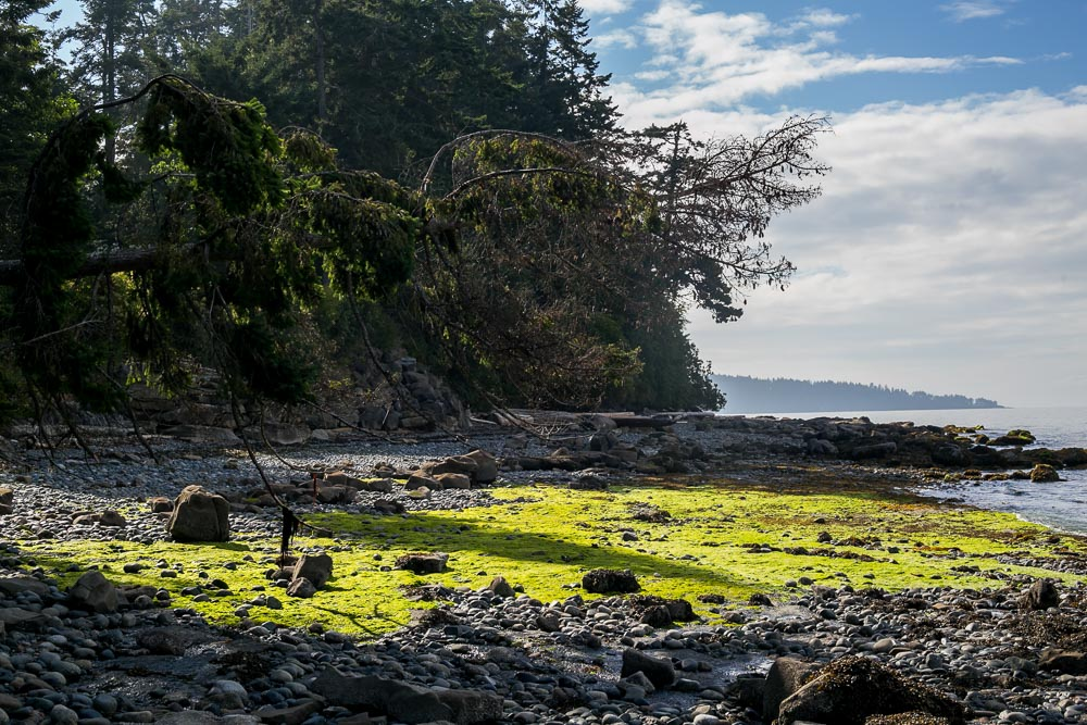 Gabriola Island Canada photos travel guide