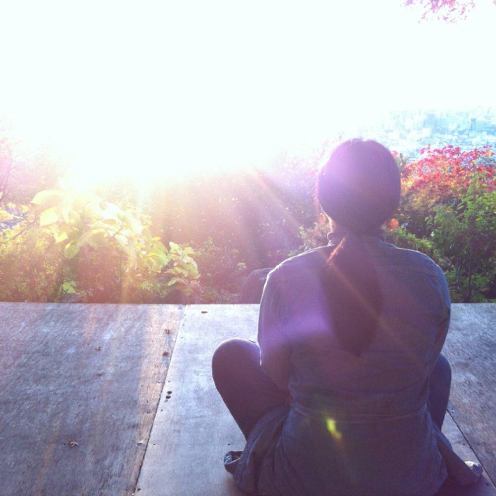 夕陽を観る会