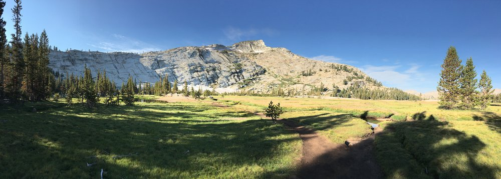 cathedral lakes meadow.JPG