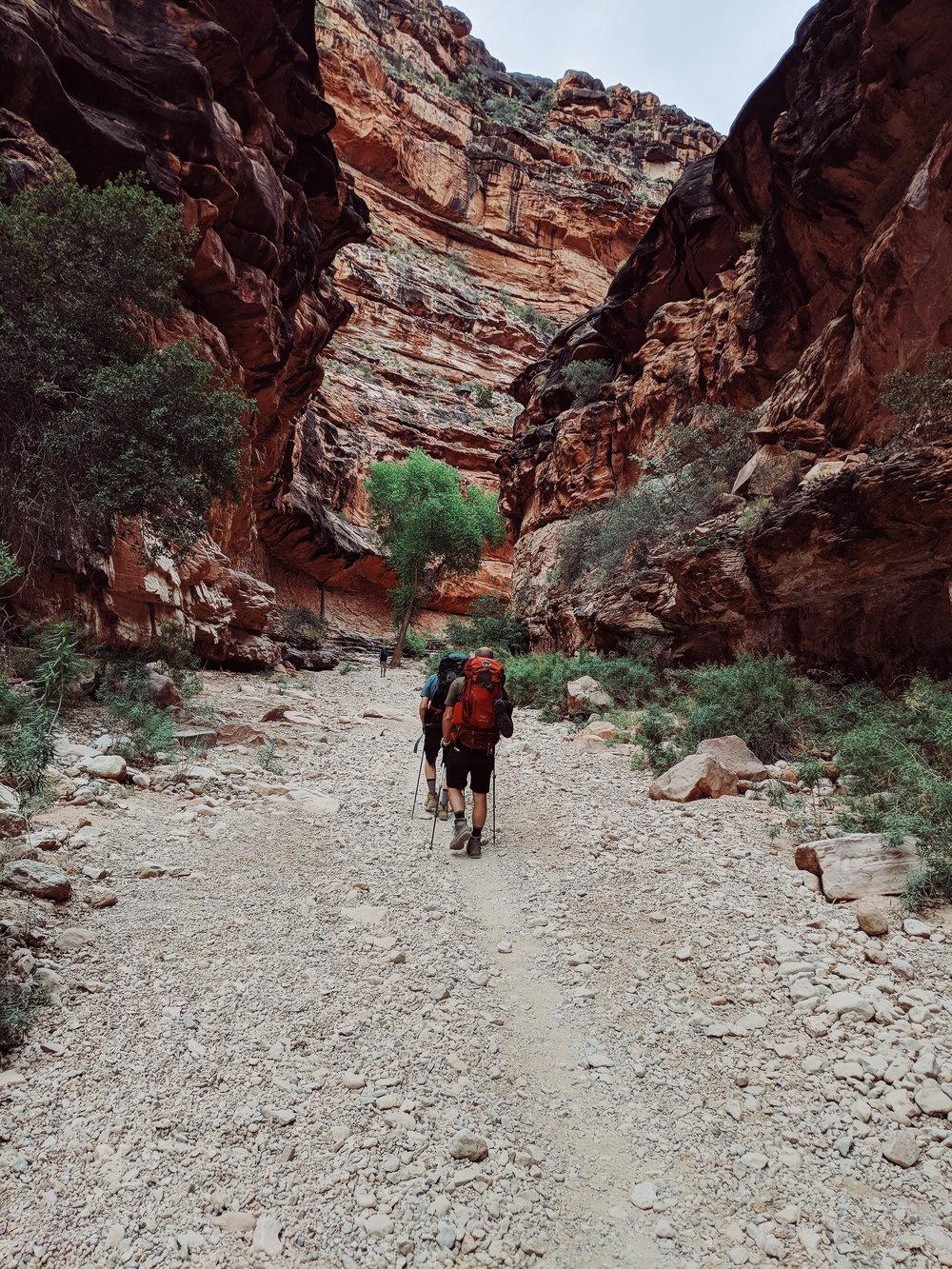 hualapai canyon 1.jpg