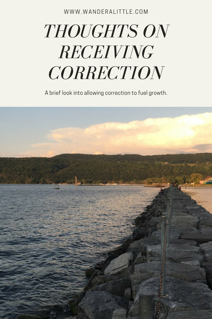Thoughts on receiving correction.png