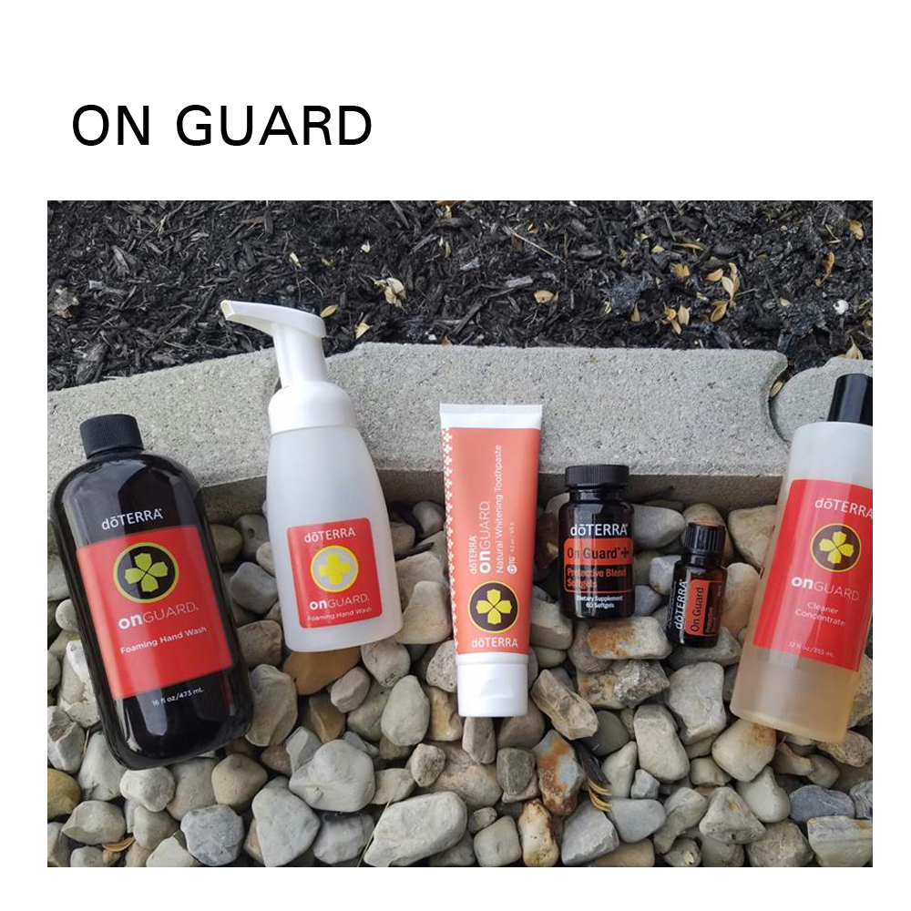 ON GUARD SITE.jpg