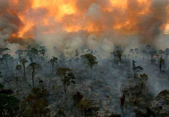 Burning of Amazon rainforest to make way for cattle pasture. (photo: Dado Galdier, The Guardian/AP)