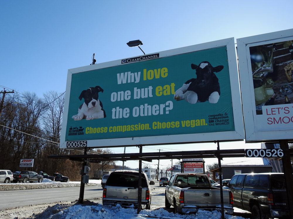 Hudson Valley billboard on Ulster Ave., 2017