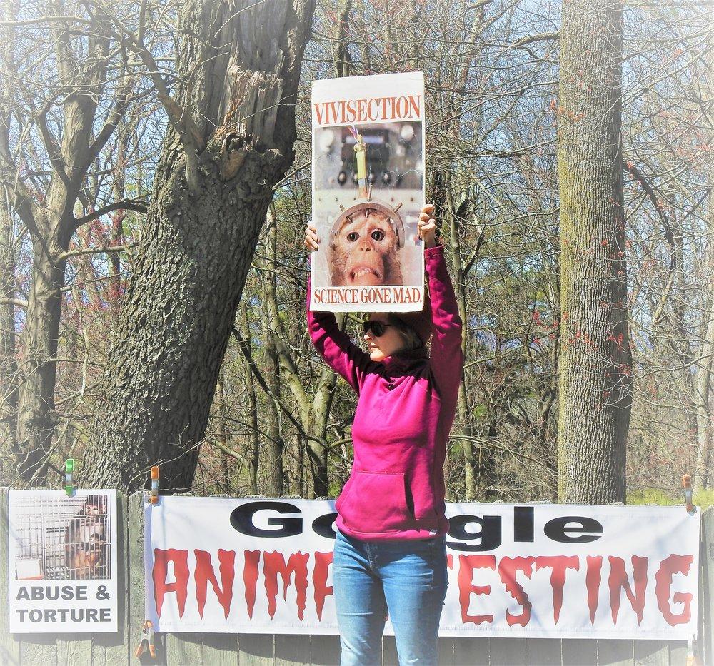 Vigil at Charles River Laboratories in Kingston, NY
