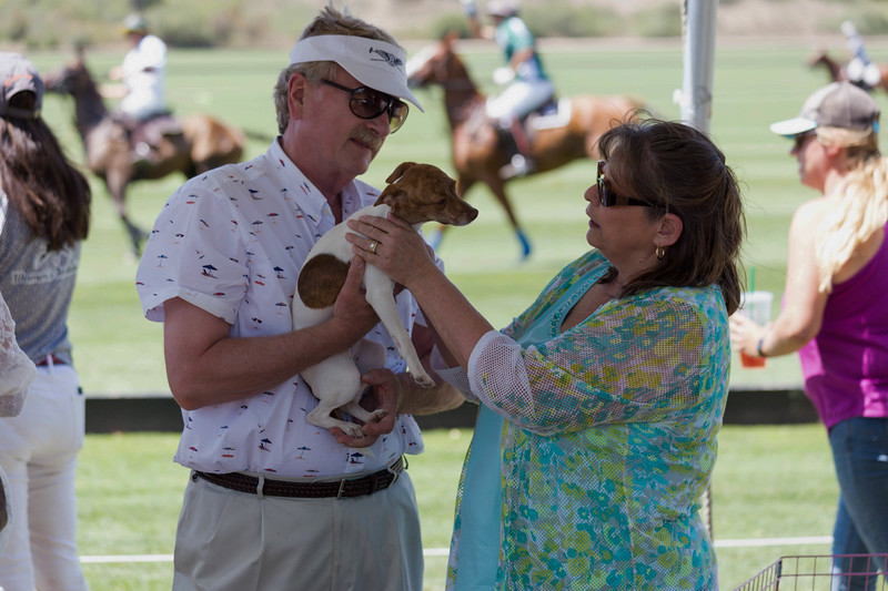 ppp event couple with dog and horses in background.jpg