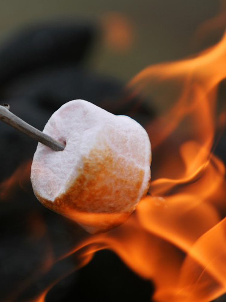 Cozy Firepit Rentals -