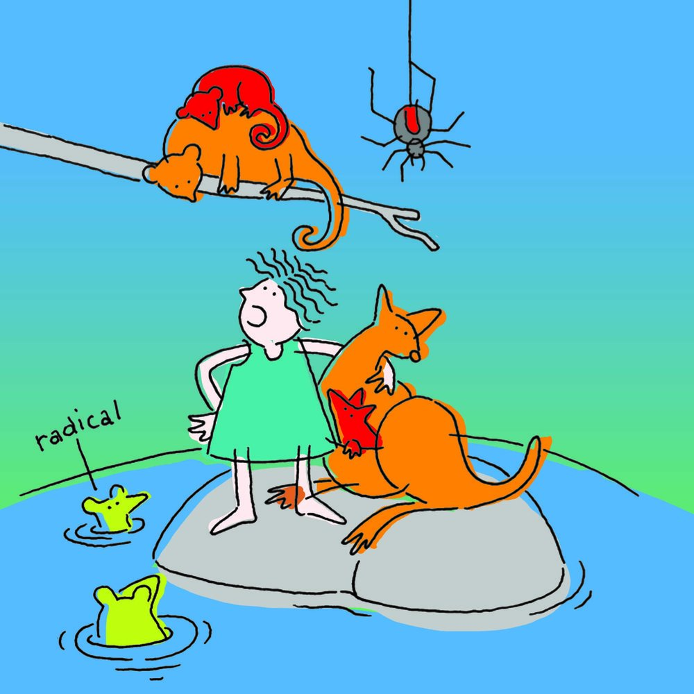 Children's book illustration with a red back spider and kangaroo.