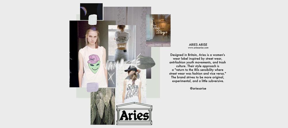 BRAND STUDY ARIES ARISE
