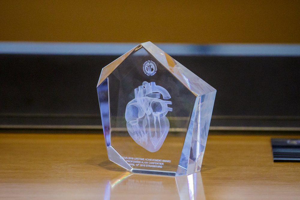 Life Achievement Award : 67th International Congress of the European Society of Cardiovascular and EndoVascular Surgery