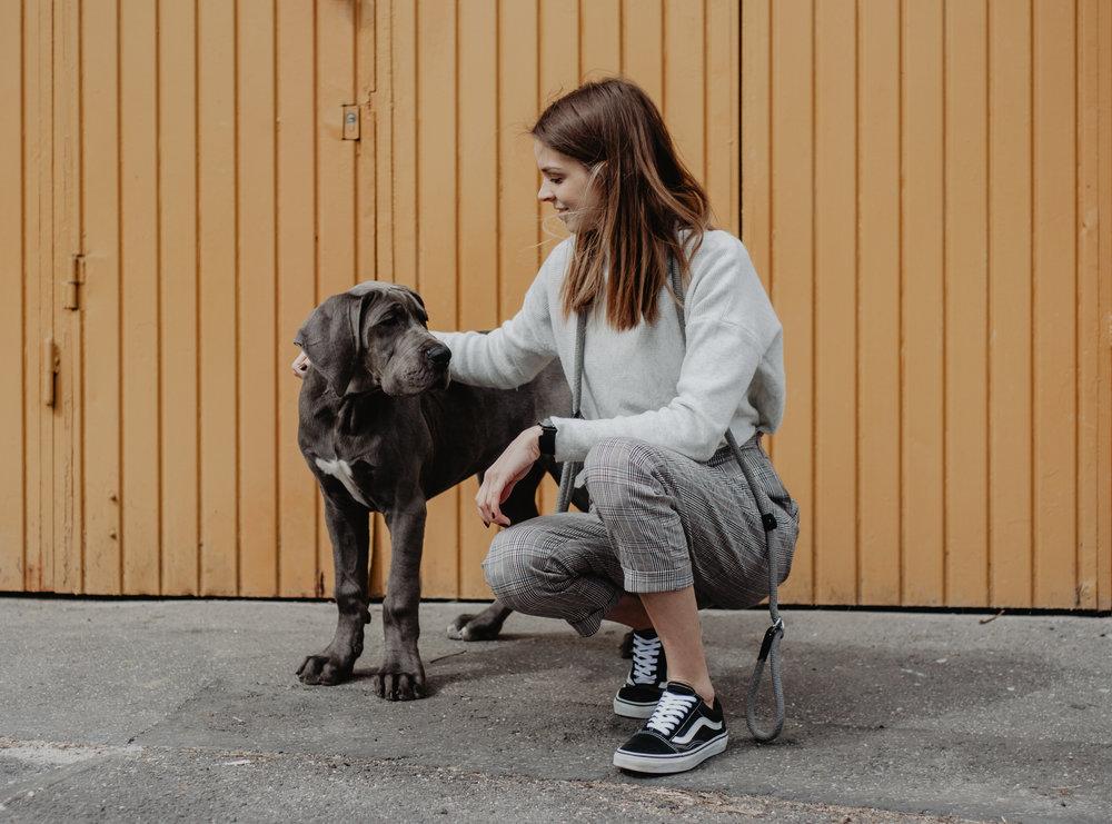 A MI GARDÁNK - Bemutatom Nektek az új családtagunkat, Gardát.Őegy 4 hónapos Német Dog,akit legalább olyan sokszor fogtok látni, mint a lányunkat, Zoét.Tudom, hogy nagyon jó társa, barátja és védelmezője lesz Zoénak, ahogy nekem volt 12 évig az előző Dogom,Zeus. Szeretném és célom az, hogy általuk jobban megismerjétek és elfogadjátok ezeket a hatalmas, mégis vajszívü kutyákat.TOVÁBB