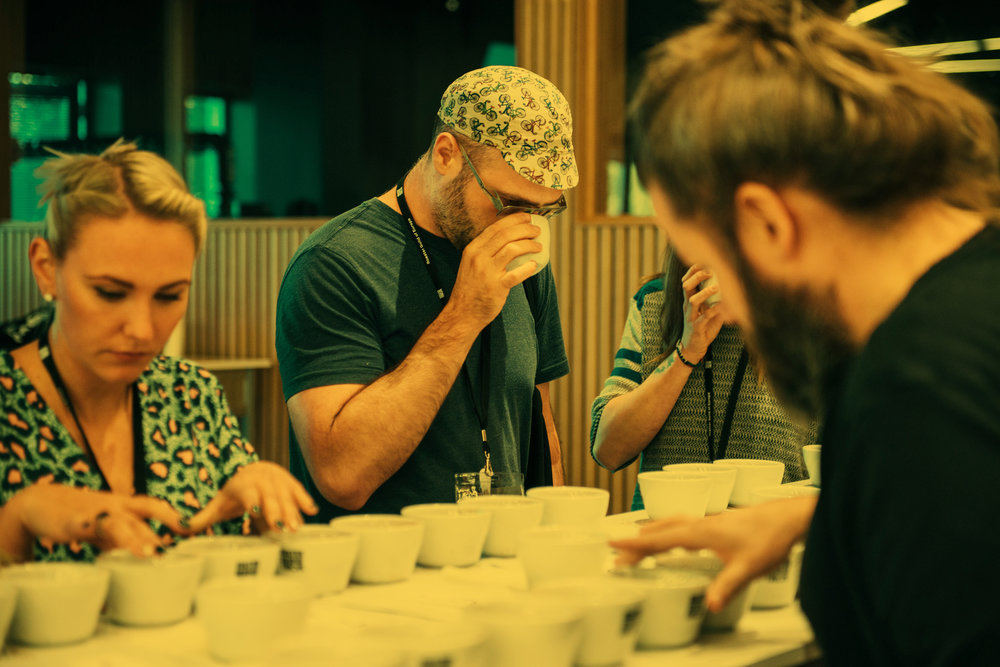 Coffee Roasters Guild events are offered year-round, bringing together the coffee industry's most knowledgeable and inspiring professional roasters. Are you a member or an interested professional roaster? Join us at our next event. -