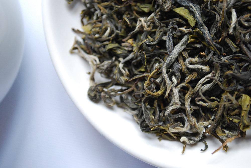 seaweed_web.jpg