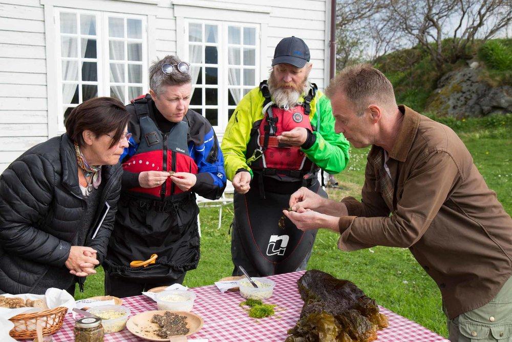 Bjørn Viken (from Ting med Tang) sharing seaweed knowledge at Herøy gard (© Siv-Elin Nærø)