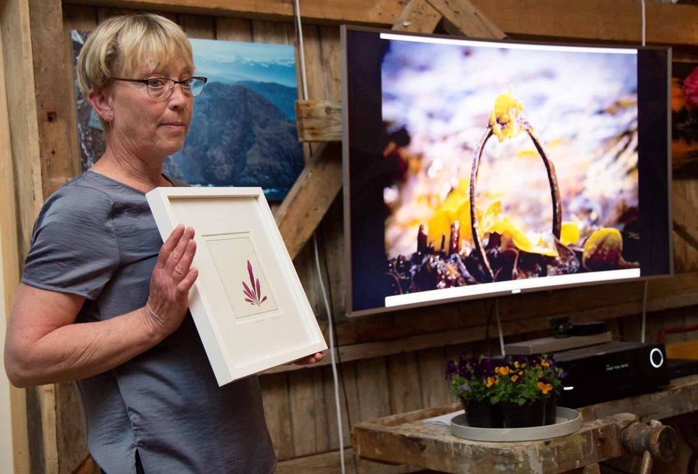 The winning picture was taken by Mona Solbakk Iversen (© Siv-Elin Nærø)