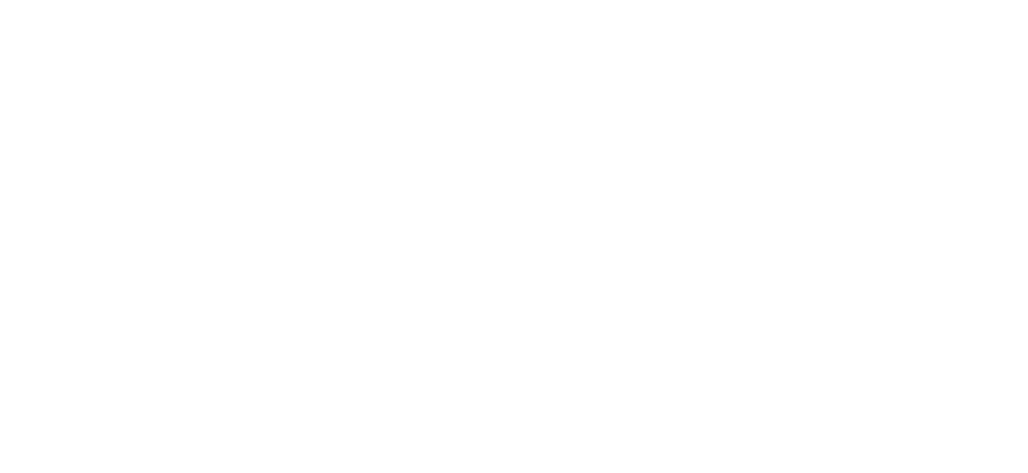 MOUNTAIN MINDS THERAPY