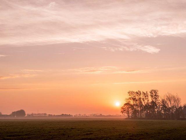 October 15th  #morning #sunrise #shotoniphone