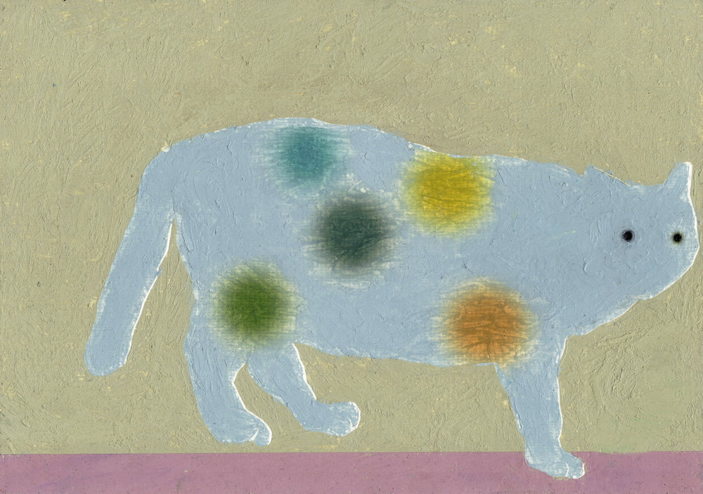 cat grey.jpg